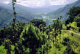 NEPAL-trekking-all-the-way-up-the-valley